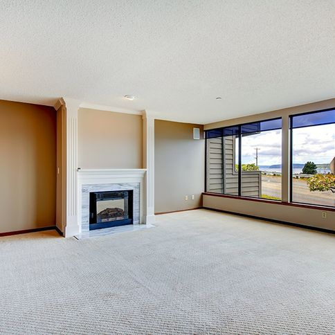Empty living room with carpet and fireplace